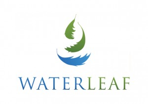 The Waterleaf